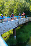 Young bicyclists on wooden bridge. Group of four bicyclists on bridge Stock Photography