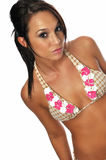 Young bikini model Royalty Free Stock Images