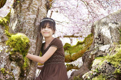 Young biracial girl in flowering cherry tree Royalty Free Stock Images