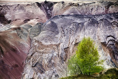 Young birch trees in front of the ruined layers of soil with lan. Dslides of slag and sand at the lignite (brown coal) open pit mining, Garzweiler, Germany, a Stock Photography