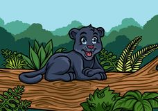 Young black panther in the jungle Royalty Free Stock Photography