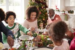 Young black woman eating Christmas dinner with her mixed race multi generation family, close up royalty free stock photography