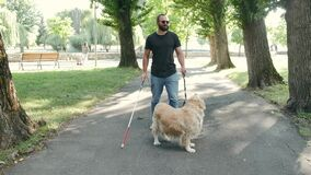Young blind man with white cane and guide dog walking on sidewalk in a park