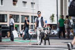 Free Young Blind Man With White Cane And Guide Dog Walking On Pavement In City. Royalty Free Stock Photo - 164927915
