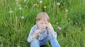 Young blond boy in meadow blowing on dandelion seeds stock footage