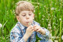 Young boy in a meadow blowing on dandelion seeds Royalty Free Stock Images