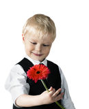 Young blond man in with flower. Stock Photos