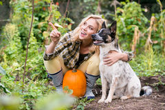 Young blond woman with dog harvesting pumpkins, autumn garden. Royalty Free Stock Photos