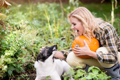 Young blond woman with dog harvesting pumpkins, autumn garden. Royalty Free Stock Photography