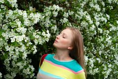 Woman sniffing flowers of apple tree. Young blond woman enjoying the scent of apple tree flowers royalty free stock image
