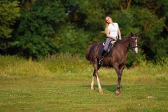 Young blond woman with long hair jockey rider jumping on a bay horse. On a background of field and forest stock photography