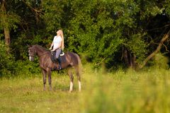 Young blond woman with long hair jockey rider jumping on a bay horse. On a background of field and forest stock images