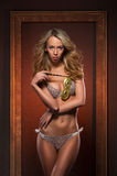 A young blond woman posing in erotic lingerie Royalty Free Stock Photo