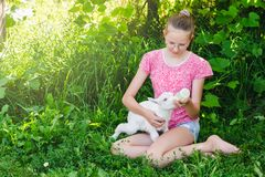 A young blonde girl feeds a little goat from a bottle of milk in the garden on a sunny summer day royalty free stock photos