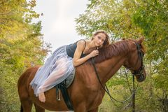 A young, blonde girl posing with a horse, a beautiful girl and a strong horse. Stock Photos