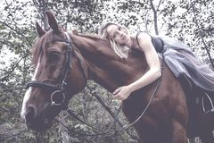 A young, blonde girl posing with a horse, a beautiful girl and a strong horse. royalty free stock photos