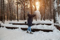 A young blonde girl in a winter coniferous forest stands in a gray hat and gloves and a dark blue jacket playing throwing snow up stock image