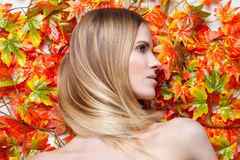 Young blonde model lying on leaves Royalty Free Stock Photography