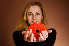 Young blonde with a red flower Royalty Free Stock Photos