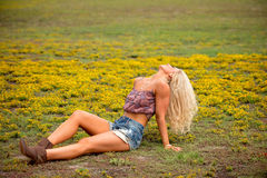 Young blonde woman in field stock photography