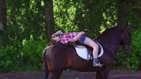 Young blonde woman in a plaid shirt takes a walk with his horse. A woman is training a horse. Summer sunny evening stock footage