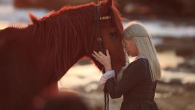 Young blonde woman taking care of her horse stock video footage