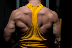 Young body builder flexing his back Royalty Free Stock Photography