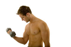 Young body builder male exercising Royalty Free Stock Images