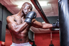 Young Bodybuilder boxing a bag Royalty Free Stock Images
