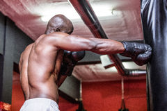 Young Bodybuilder boxing a bag Stock Photography