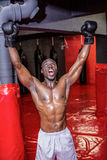 Young bodybuilder cheering Royalty Free Stock Images