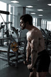 Young Bodybuilder Doing Exercise For Triceps stock photography