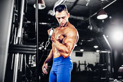 Young Bodybuilder Doing Exercise For Biceps. Young Bodybuilder Doing Heavy Weight Exercise For Biceps Stock Photos