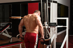 Young Bodybuilder Doing Heavy Weight Exercise For Trapezius Royalty Free Stock Photo