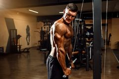 Young Bodybuilder Doing Exercise For Triceps. Young Bodybuilder Doing Heavy Weight Exercise For Triceps royalty free stock images