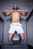 Young Bodybuilder doing weightlifting Stock Image