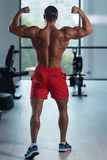Young Bodybuilder Flexing Rear Double Biceps Pose royalty free stock image