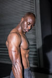 Young Bodybuilder looking at his muscles Stock Photography