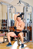 Young bodybuilder training in the gym. Dumbbell alternate triceps curl royalty free stock image