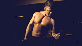Young bodybuilder training Stock Images