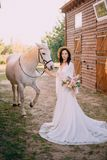 Young boho style bride is stroking white horse royalty free stock photography