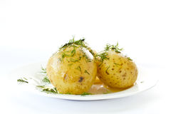 Young boiled potatoes Royalty Free Stock Photos
