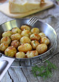 Young boiled potatoes Stock Image