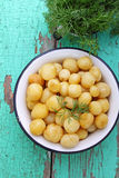 Young boiled potatoes Royalty Free Stock Photo