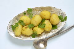 Young boiled potatoes with cilantro Stock Photos