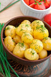 Young boiled potatoes Stock Photos