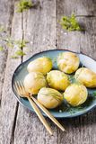 Young boiled potatoes with dill and olive oil Royalty Free Stock Photos
