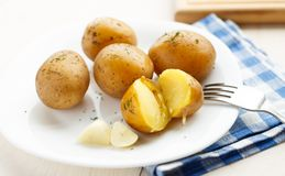 Young boiled potatoes with dill Royalty Free Stock Images