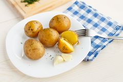 Young boiled potatoes with dill Stock Images