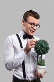 Young botanist. Young man in bow tie and suspenders holding a plant in his hands and smiling while standing against grey background Stock Photo